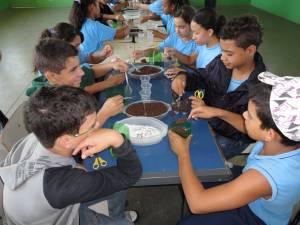 Escola No Campo (6)